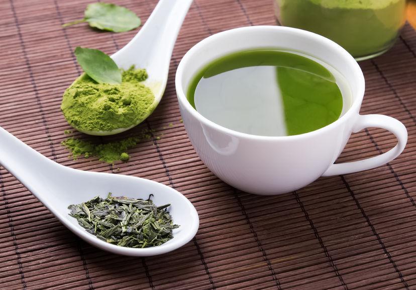 今が旬の新茶を楽しんで♪ 政所茶新茶まつりを初開催!