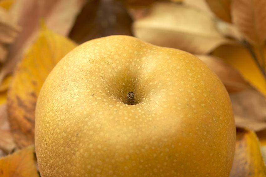 桃の味?! たてべの梨 たべて~♪